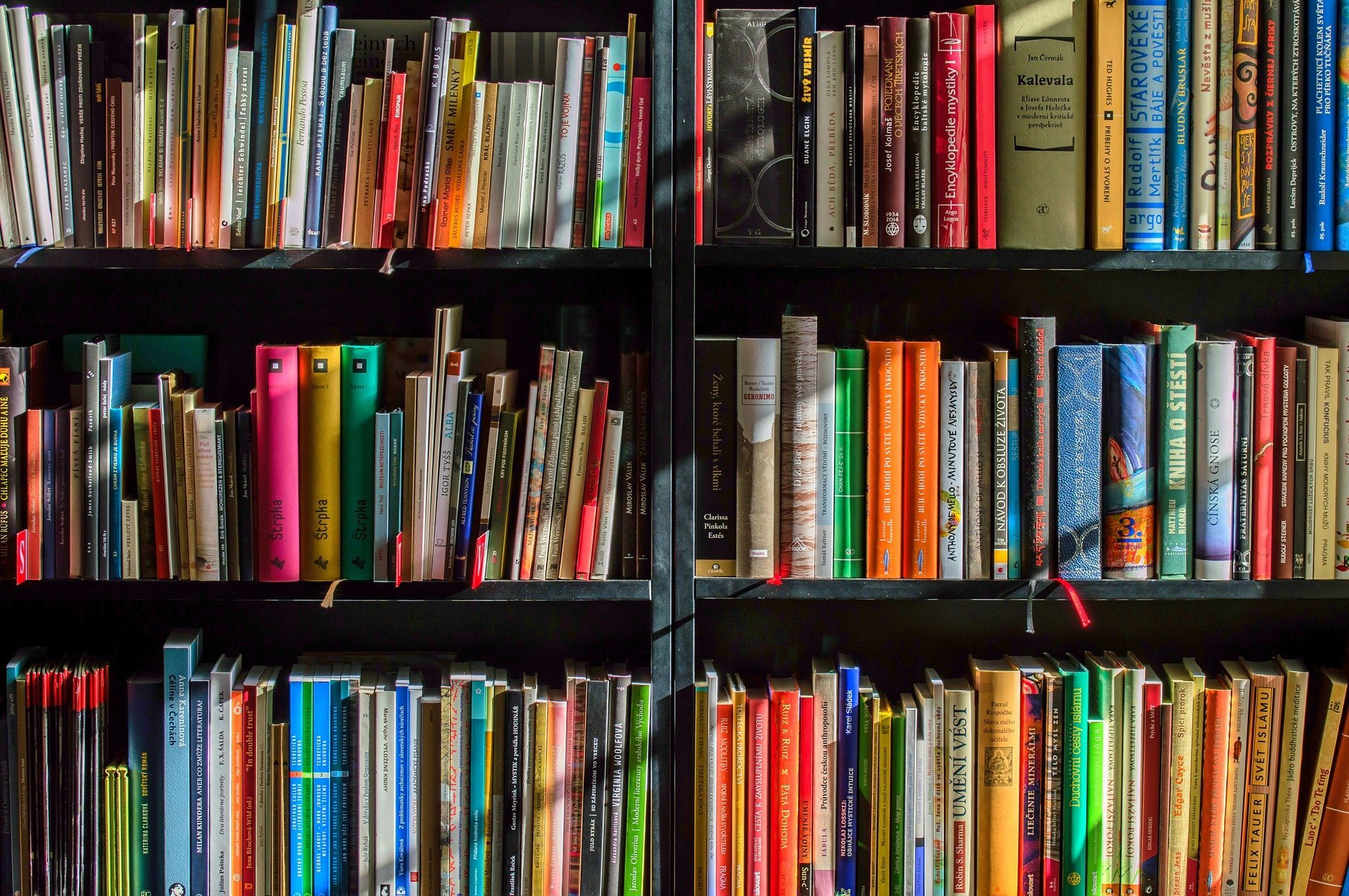 Free loan of books in Albox